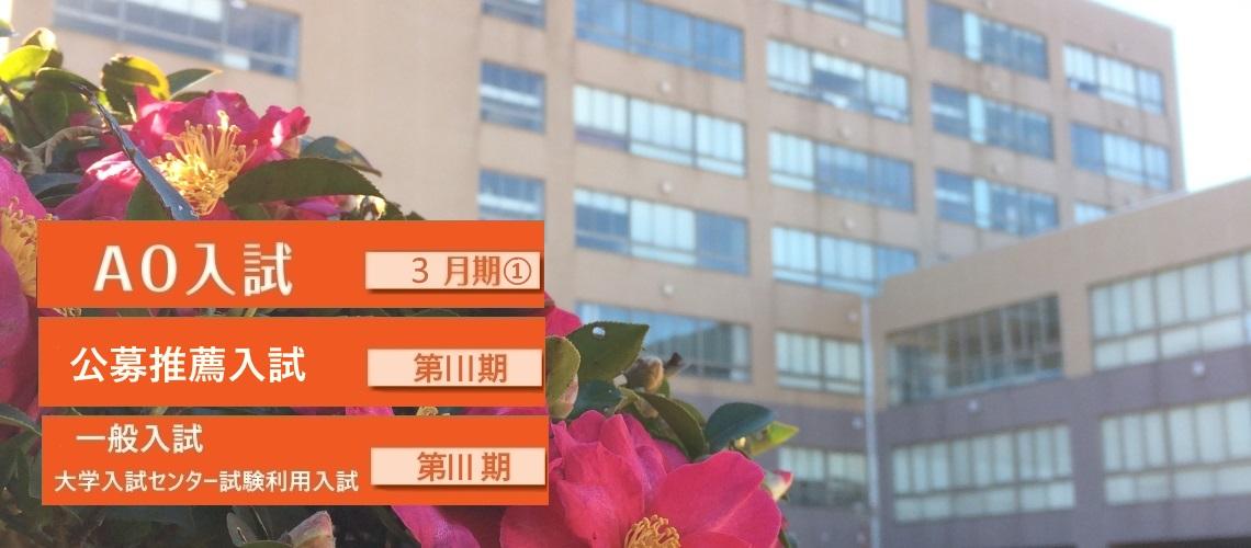 AO入試・公募推薦入試・一般入試・大学入試センター試験利用入試
